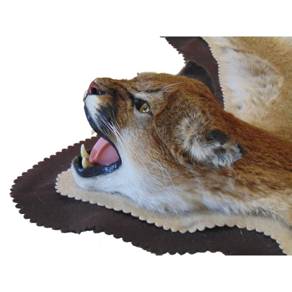 mountain lion rug