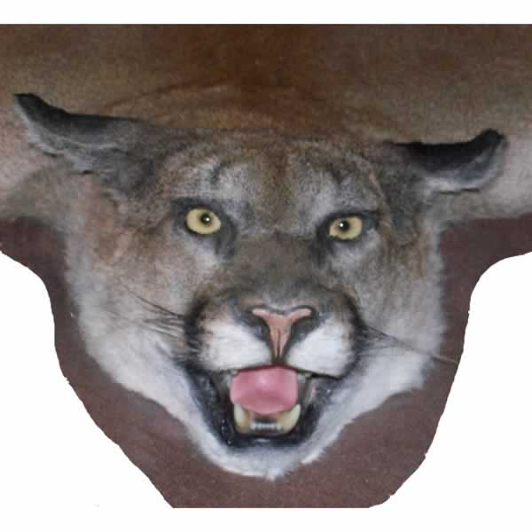 Chuck's Taxidermy Albany OR